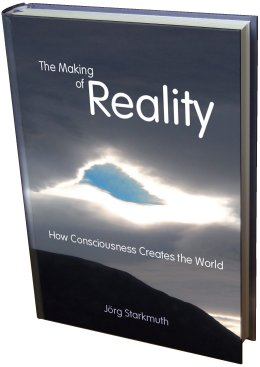 The book 'The Making of Reality'